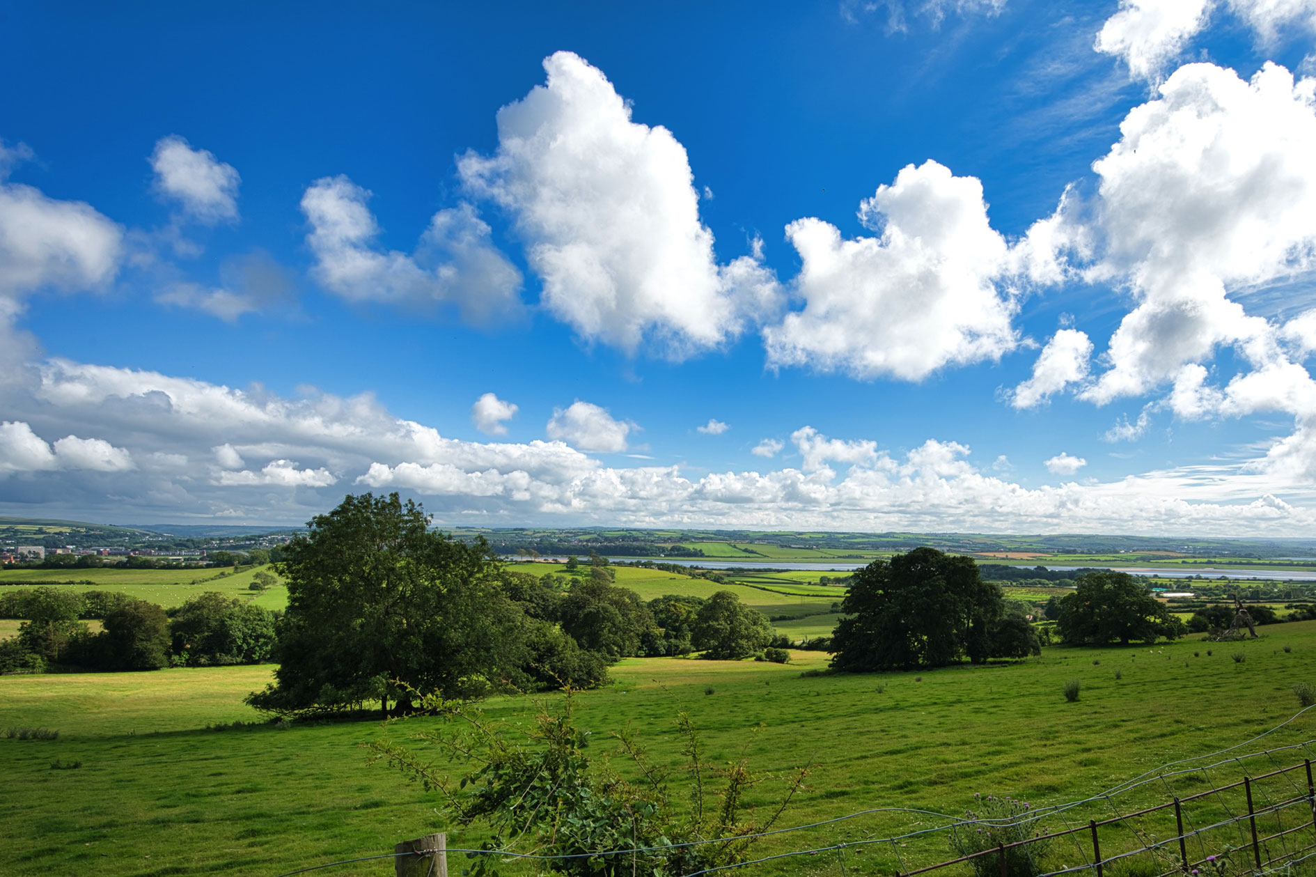 Beautiful View Of Green Fields And Countryside Expanse And Bright Blue Sky